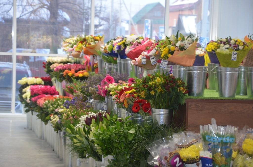 База цветов оптом самара